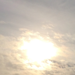 Winter Sun, Ann Grasso Fine Art