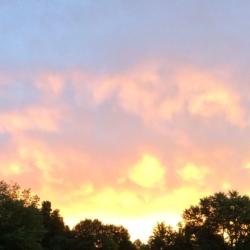 Dancing Pink Clouds, Ann Grasso Fine Art
