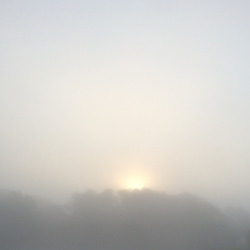 Sunrise in Heavy Fog, CHRONOLOG, Ann Grasso Fine Art