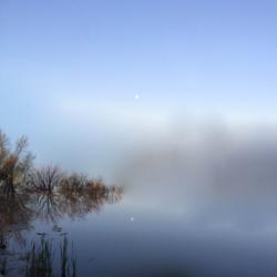 Moon with Reflection, CHRONOLOG, Ann Grasso Fine Art