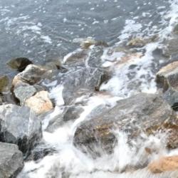 Rushing Water, Ann Grasso Fine Art