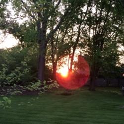 Red Ball Sun, Ann Grasso Fine Art