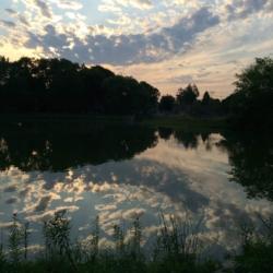 Cloud Reflection, CHRONOLOG, Ann Grasso Fine Art