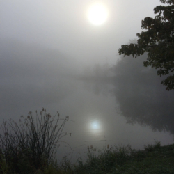 Foggy Reflection, CHRONOLOG, Ann Grasso Fine Art